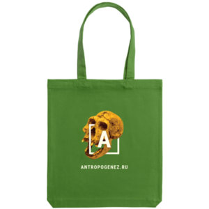 Холщовая сумка «Антропогенез», зелёная