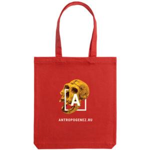 Холщовая сумка «Антропогенез», красная