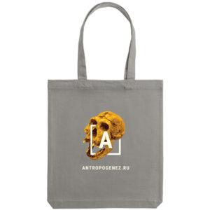 Холщовая сумка «Антропогенез», серая